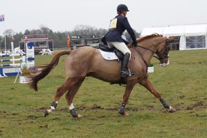 Burgham Horse Trials March 2015 007 by kittystocksus