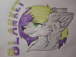 Traditional Commission for ERR00R by SonicaHedge