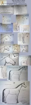 How to draw standing horse by Toppyrocks