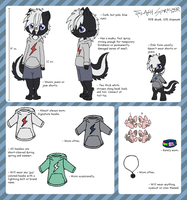 Official Flash Sprayer Ref. Sheet by coreooo