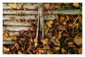 The collapsed fence by laurentroy