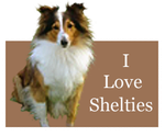 I Love Shelties by Loulou13