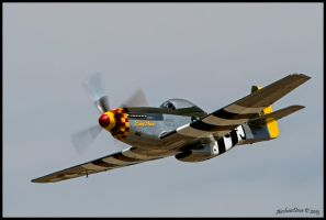 Lady Alice Riverside 2013 by AirshowDave