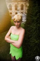 TinkerBell - Dont mess with me by SoraPaopu