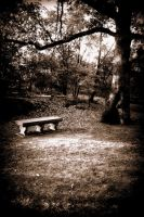 and that forgotten bench... by Afriell