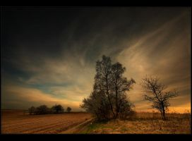 march 2008 - Poland by Sesjusz