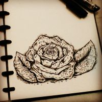 ROSE by FirdausAshari