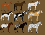 Horse Adopts [OPEN- Art or Points] by horserider201