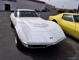 LT-1 Corvette by Swanee3