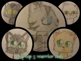 my top 5 warrior cats by cyancrap