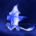Dragon Design Auction #6 [CLOSED] by Trioza