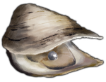 Oyster with Black Pearl by TokoTime