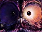 D.S. -_Staring Owl_- by ghevan