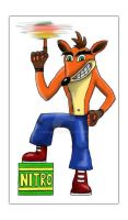 Crash Bandicoot by AimzzArt