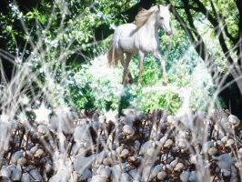 ride the white horse by winterdecember