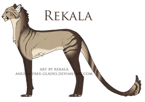 Rekala Cat, Temp. Ref. Sheet by RekalaRain