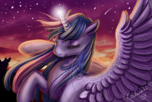 princess of the twilight by Schiraki