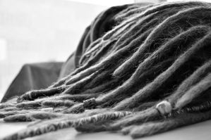 Dreadlocks by DreadStenger