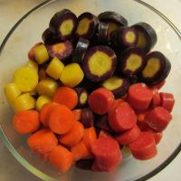 Colorful Cut Carrots 1 by Windthin