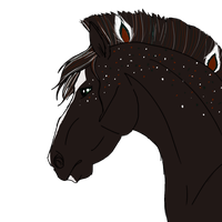 6801| Syrileus, King of Masika by Aspen-Isles-Stable