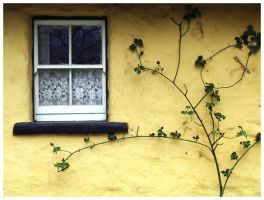 window in Ireland by ShoWatanabe