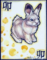 Zodiac: The Rabbit by forensicfox