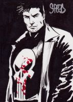 The Punisher by Mark Spears by markman777