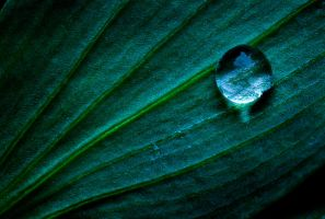 Another Just a Drop by TchaikovskyCF