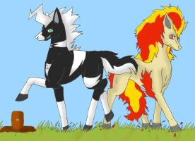 Shimama and Ponyta by RedMoon97
