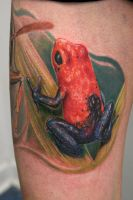 frog tattoo by graynd