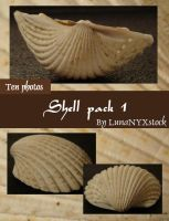 Shell pack - 1 by LunaNYXstock
