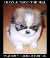 Angry Puppy by Doomsday-Device