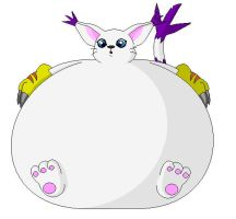 Fat Gatomon by MacSilverD