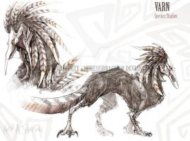 Character sheet: Varn by Skreel