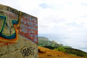 Graffiti Atop Koko Head by jeffrade