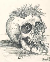Skull by superfreak333