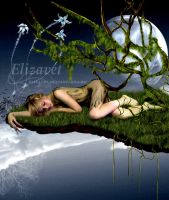 It dreams you by Elizavet