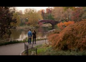 Couple in Central Park by Tomoji-ized