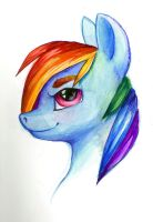 Rainbow Dash Mixed Media Bust by Brendavid