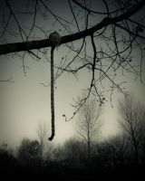 The hanging by Dynnnad