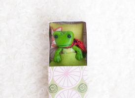 Miniature Frog in a Matchbox by freedragonfly