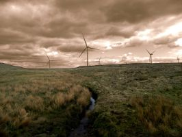 Catching the Storm by JunsuiFox