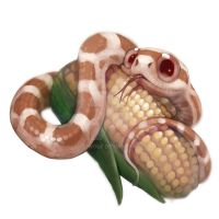 Snow corn snake by Silce-Wolf
