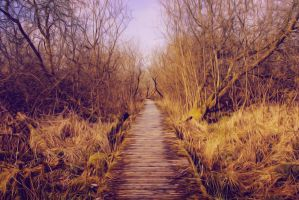 Path to nowhere by blumilein