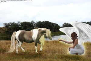 An Angel's Call by GalliumGraphics