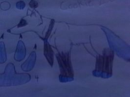 cookie ref .see descripton. by ImWolfyQ
