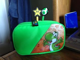 Nintendo 3DS Case by lupus2032