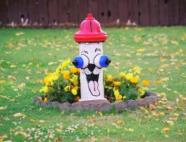 Wild and crazy fire hydrant... by wolfcreek50