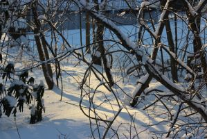 Winter Scenery 11 by game2create