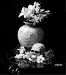 Skull and Flowers by PhotographybyVictor